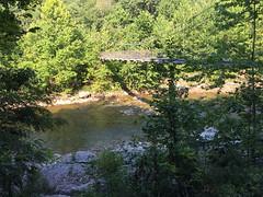 Otter Creek Trail Bridge (Bitmapped) Tags: usa westvirginia rivers mississippiriver ohioriver cheatriver hendricks dryfork monongahelariver monongahelanationalforest tuckercounty blackfork ottercreektrail