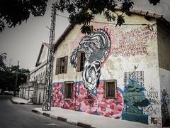 Graffiti - village de Séraidi (Y.Rostom) Tags: street urban architecture algeria dessin peinture extérieur bâtiment algérie murs annaba séraidi