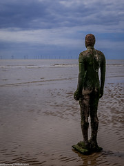 Formby beech & Gormley statues (37 of 71) (andyyoung37) Tags: sea silhouette reflections anotherplace gormleystatue crosbybeech