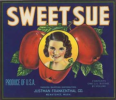 "Sweet Sue • <a style=""font-size:0.8em;"" href=""http://www.flickr.com/photos/136320455@N08/21480329061/"" target=""_blank"">View on Flickr</a>"