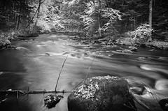the river... (rsc_escher) Tags: blackandwhite bw fall nature water monochrome river landscape mono long exposure outdoor monotone waterscape copyrightrscescheryahoocom