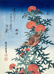 Thistle and red crossbill (Japanese Flower and Bird Art) Tags: red flower bird art japan print japanese thistle hokusai cirsium asteraceae woodblock katsushika fringillidae ukiyo crossbill loxia curvirostra readercollection