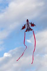 Fighter jet kite (mfeingol) Tags: seattle sunset kite evening gasworks seattleflickrmeetup stroll1509