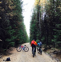 Fall Ride in the Wallowa's (Doug Goodenough) Tags: bicycle cycle bike pedals spokes jen scott wallowa mountains forest fall gravel grinding oregon dirt october oct 2015 15 drg53115 drg53115p drg531