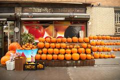 New York City style pumpkin patch (nojo1820) Tags: autumn orange newyork fall halloween streetscenes pumkins
