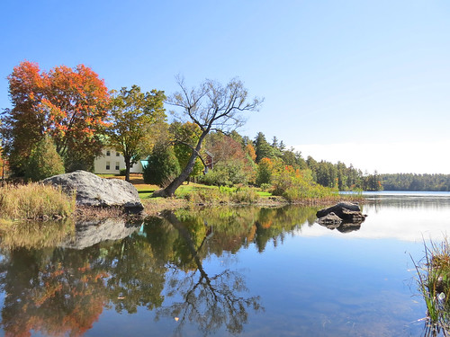Lakeside Fall Foliage - R Crosby
