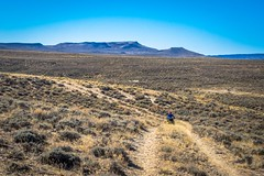 Earth roads turn to wagon tracks in the Great Divide Basin.