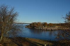 Suomenlinna / Sveaborg.. (Sanja Byelkin) Tags: tree finland seaocean oleksandrbyelkin visittohelsinkitallinn2015