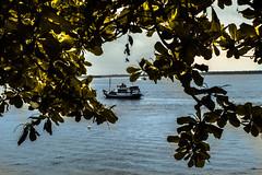 Canania (Felipe Valim Fotografia) Tags: foto vale viagem ribeira valedoribeira ilhacomprida cavernadodiabo cajati caneneia