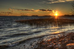 St Lawrence Sunset (Boris Ajd) Tags: ontario canada nature water grass skyline river reeds landscape outdoors 2015 borisajdukovic
