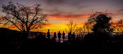 Freiburger (Tria-media_Sven) Tags: sunset people canon bestof leute sonnenuntergang watching posing freiburg canoneos5dmarkiii geotagfreiburg