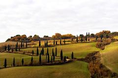 Montichiello (Wolfgang.Grilz) Tags: unesco tuscany siena montepulciano valdorcia toskana cretesenese