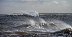 Strong winds at Alnmouth (loftylion9) Tags: storm sunrise gales northumberland bamburgh holyisland lindisfarne stmarys blyth amble stmaryslighthouse dunstanburghcastle embleton coquetisland blythbeach lowhauxley bambirghcastle