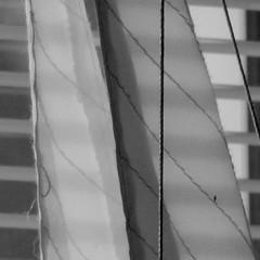 lines (Landanna) Tags: bw white black lines zwart wit sort hvid zw lijnen