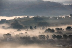 (claudiophoto) Tags: misty fog landscapes emotion nebbia lemarche marcheregion suggestivo flickrbest paesaggiitaliani paesaggidellemarche claudiophoto fotodellemarche marchetourism marcheland