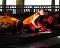 Sojong Tibetan Buddhist Ceremony (Everyday Exile by Tammy Winand) Tags: travel people religious buddhist faith religion ceremony culture photojournalism documentary traditions buddhism nuns monks devotion ritual tibetan spirituality spiritual devotees himalayas cultural dharamsala mcleodganj himachalpradesh lifestyles sojong