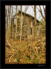 The Birdog Hotel (the Gallopping Geezer 3.3 million + views....) Tags: trees building abandoned mi rural canon woods decay michigan country structure falling hidden faded worn weathered hiding derelict decayed geezer corel 24105 2015 lapeer bowersroad 5d3 birdoghotel