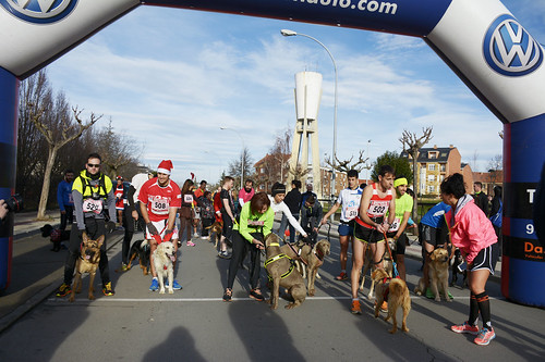 "Canina popular San Silvestre 2015 La Virgen del Camino • <a style=""font-size:0.8em;"" href=""http://www.flickr.com/photos/66442093@N08/23940420031/"" target=""_blank"">View on Flickr</a>"