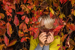 Metachromatism 40/52 (jrobblee) Tags: canada fall autumn leaves leaf colour red yellow portrait family people