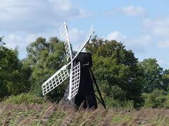 P1120559 (jrcollman) Tags: windmill plants splant salix wickenfennationalnaturereservent betula pplant cambridgeshire phragmitesaustralis bplant