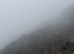 Valle de Lago (happy.apple) Tags: valledelago principadodeasturias spain es fog trees mountain landscape