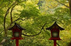 Kurama-Temple Kyoto / Japan (Kashinkoji) Tags: sony a77 slt kurama temple 50mm kyoto japan