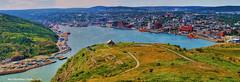 St John's Newfoundland (Rex Montalban Photography) Tags: rexmontalbanphotography stjohns newfoundland quidividi signalhill