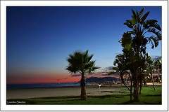 La hora azul (Lourdes S.C.) Tags: paisaje costa costamediterrnea playa anochecer atardecer horaazul horamgica palmeras andaluca