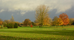 Pennington Golf Course (Joan's Pics 2012) Tags: penningtongolfcourse magpies empty nogolftoday waterlogged autumn
