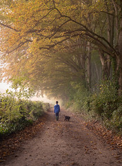 Boy's Best Friend (Sarah_Brooks) Tags: boy childhood puppies walk autumn colour trees tree mistfog puppy boysbestfriend