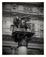 Verona Winged Lion (b16dyr) Tags: italy veneto verona column sculpture wingedlion blackandwhite bw monochrome architecture