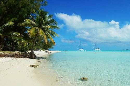 Beach in Motu - Bora Bora - French Polynesia