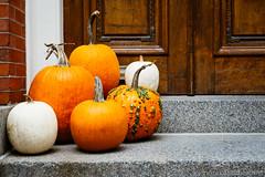 Happy Fall Season (Nora Kaszuba) Tags: pumpkins happyfallseason beaconhill bostonmassachusetts stoop 53mmwithcropfactor norakaszuba door fujifilmxt2