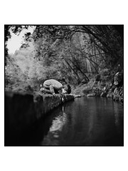 In japanese, Taga means Big River (Frederic Froument) Tags: rolleiflex 28fx kodak trix d76 fredfroum froument new babylon stories akabelly