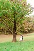 Wedding Photography By: Tracy Shoopman Photography #tracyshoopmanphotography #thebarnatchestnutsprings #Sevierville #barn #easttnphotographer #rusticwedding #swing #tree #bride #groom #wedding #love #happy #couple #fallwedding #beautiful (Tracy Shoopman Photography) Tags: beautiful wedding thebarnatchestnutsprings fallwedding couple swing easttnphotographer groom sevierville barn happy love tree rusticwedding bride tracyshoopmanphotography
