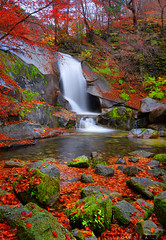 falling leaves (jon lisondra jr) Tags: bangtaesan autumn idan waterfalls