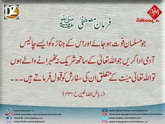 15-11-16) dz group (zaitoon.tv) Tags: mohammad prophet islamic hadees hadith ahadees islam namaz quran nabi zikar