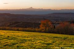 Le Langhe (beppeverge) Tags: barolo beppeverge colline dolcetto grapes italy landscape langhe moscato paesaggio roero sunset tramonto uva vigna vigneti vineyard vino vitigni wine