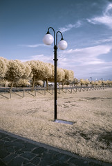 The Lamp (Athrandel) Tags: infrared ir infra red sky skies landscape land landscapes park tree trees nature cloud clouds