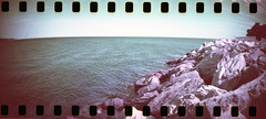 film (La fille renne) Tags: film analog 35mm lafillerenne sprocketrocket lomography lomochromepurple lomochromepurplexr100400 purple landscape nature sea roadtrip travel cavalaire