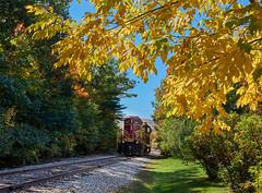 Autumn train (Tim Ravenscroft) Tags: autumn foliage railway conway newhampshire usa white mountains