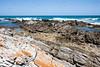 Sudafrica (andreadegi) Tags: municipalitàlocaledicapeagu westerncape sudafrica municipalitàlocaledicapeagulhas za
