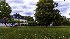 Magical Town (KSDiaz) Tags: canonrebelt5i cologne germany town house nature sky life landscape