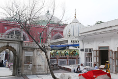 But Where Are The Tombs of My Beloved Leaves? (Mayank Austen Soofi) Tags: delhi walal hazrat nizamuddin auliya dargah sufism but where's tomb my beloved leaves tree red