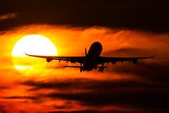 D-AIFF - Airbus A340-313 - Lufthansa (Bjoern Schmitt) Tags: daiff lufthansa airbus a340313 cn 447 sunset sun clouds kmia miami mia departure jetblast airplane usa 343 340 a340