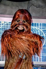 Chewbacca (disneylori) Tags: chewbacca starwars starwarslaunchbay disneycharacters meetandgreetcharacters nonfacecharacters hollywoodstudios waltdisneyworld disneyworld wdw disney