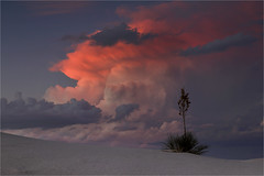 Dramatic White Sands (Sandra OTR) Tags: white sands nationalpark new mexico sand dunes desert clouds thunderstorm sunset weather yucca solitude nature