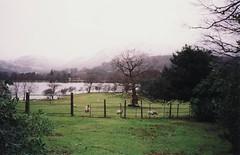 006 (fjordaan) Tags: lakes 1999 scanned