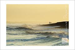 never Alone (Emmanuel DEPARIS) Tags: man beach sunrise de bay le fisher cote pecheur plage emmanuel baie somme cayeux opale hourdel picarde deparis
