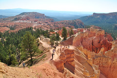 Day 5: View from Sunrise Point (CatalogThis) Tags: trees hiking backroads brycecanyonnationalpark